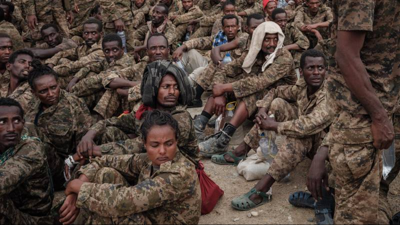 A call to solve Ethiopia's war: 'The state cannot afford more destruction'