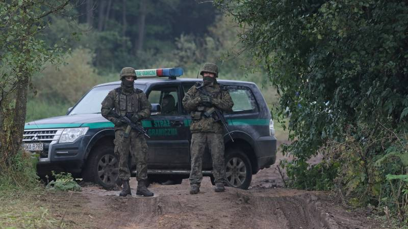Migrants found dead on the border between Poland and Belarus